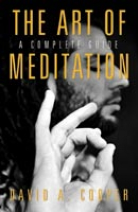 The Art of MEDITATION by David A. Cooper