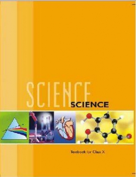 NCERT Science Textbook For Class - 10